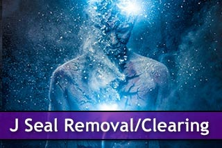 Click here for 15D J-Seal Removal and Clearing